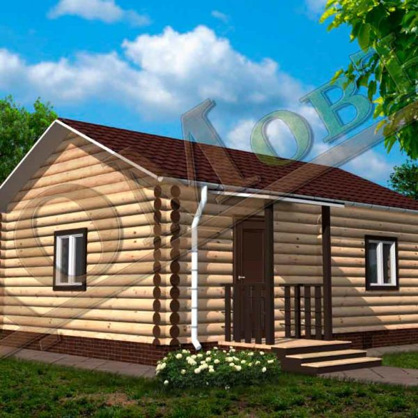 Дом из бревна 6x8